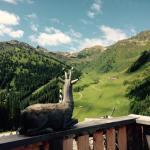 aar-wirt-zillertal-sommer-views
