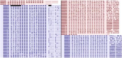 Imagen 1: Diferencias en los protocolos de red