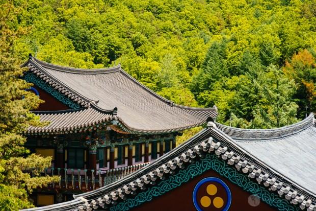 Seoul Editorial Photographer