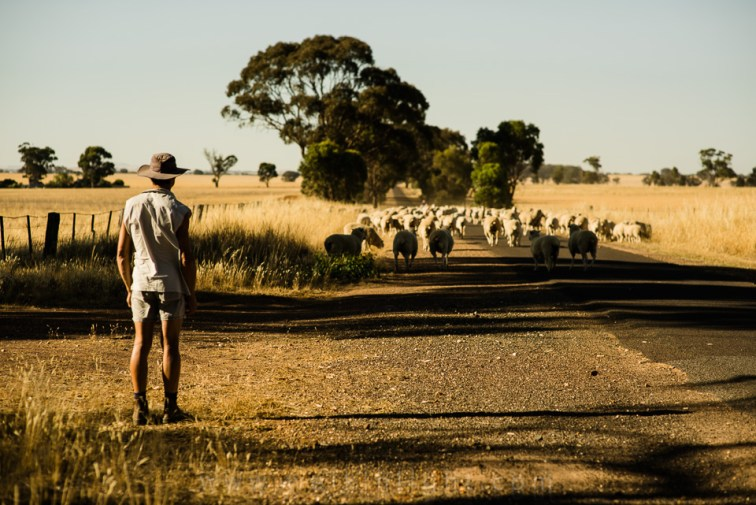 Australia-Travel-03