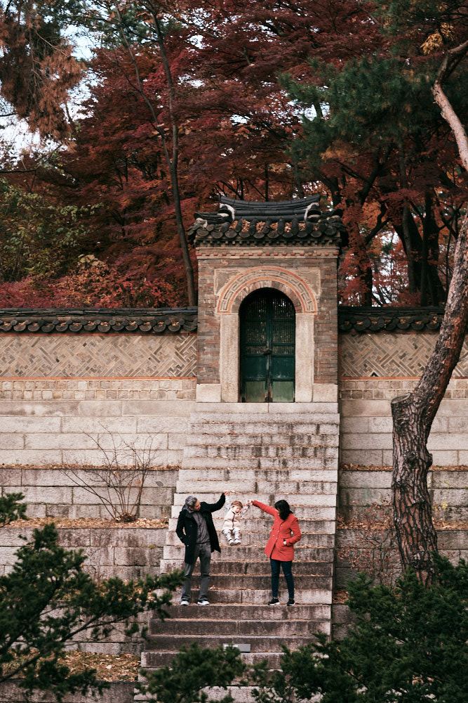 Autumn Family Photos in Changdeokgung