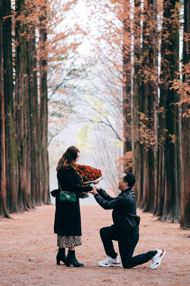 Kon Yew Proposes to Victoria under the Metasequoia Trees at Nami Island on a Rainy Day