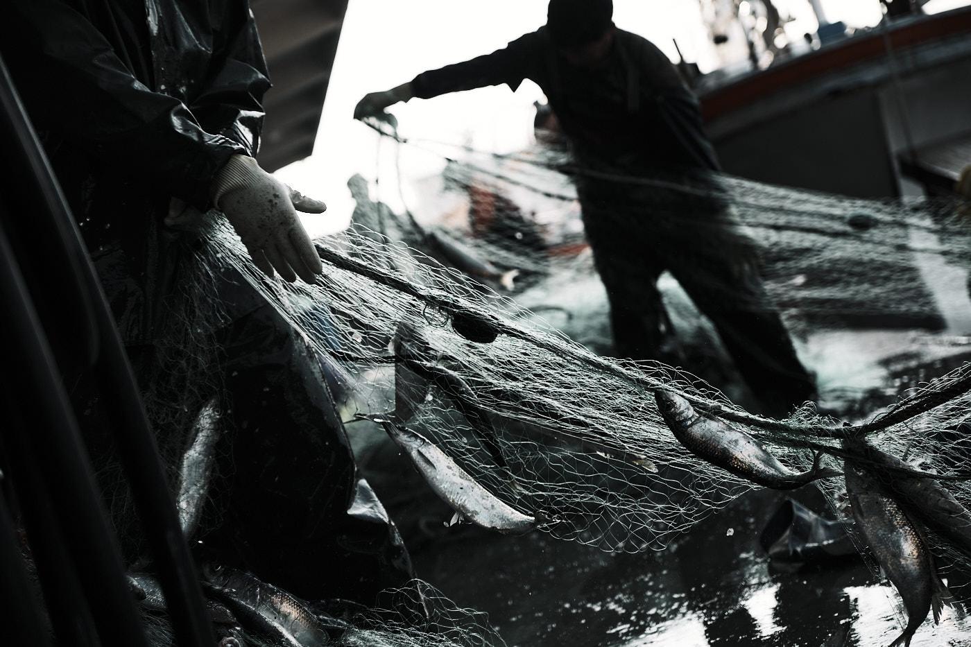 Fishermen - Samcheok, South Korea