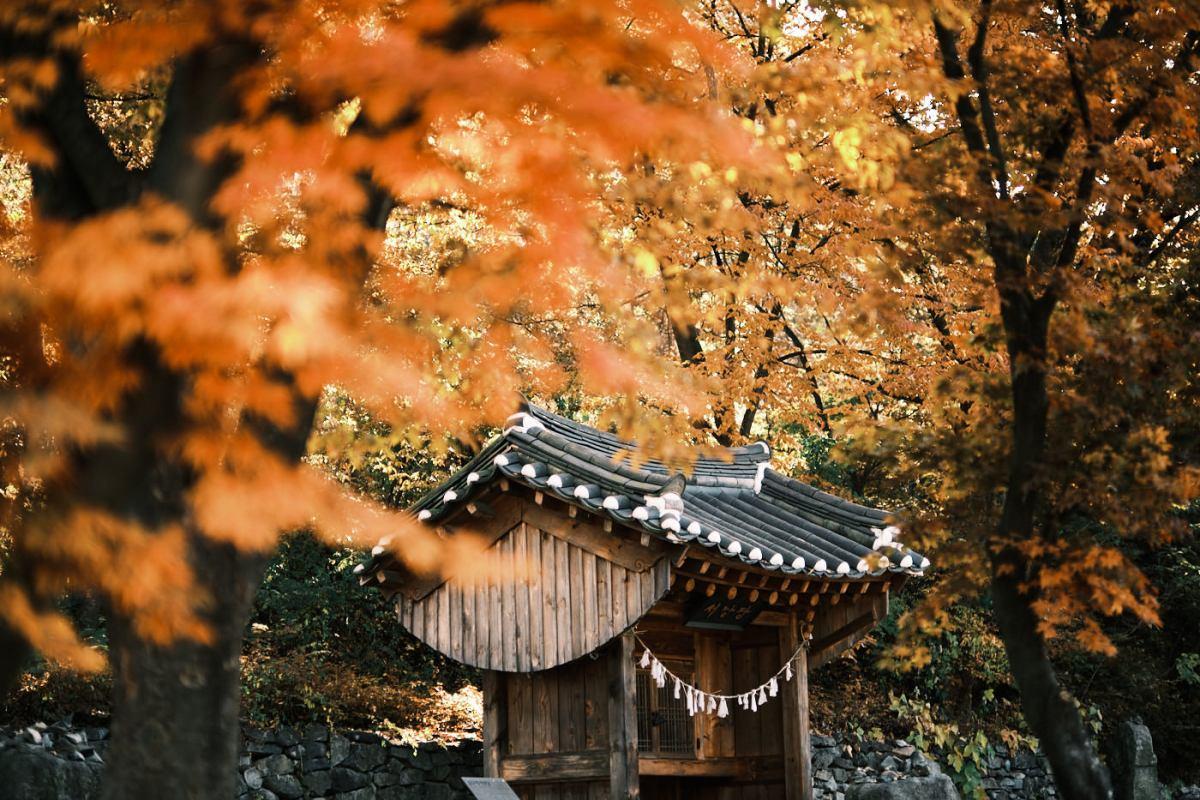 Shrine - Korea Cross Country Cycling