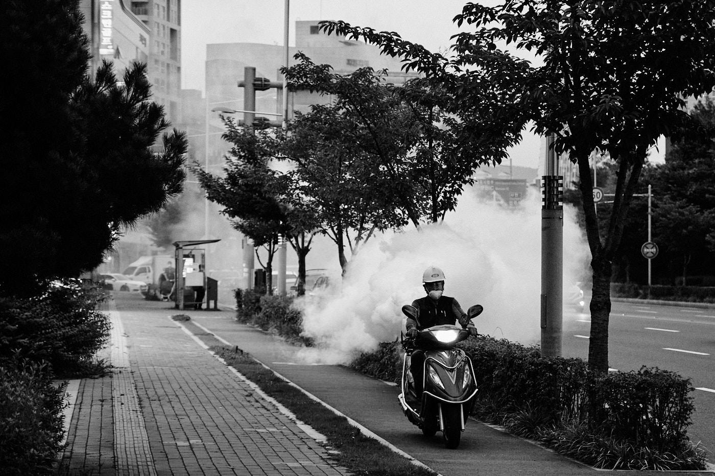 Jinju Mosquito Cloud