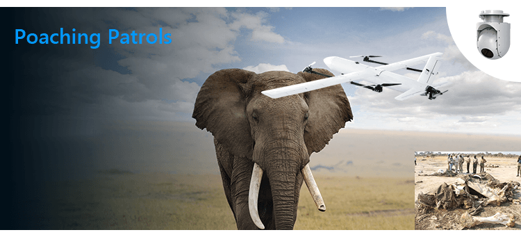 fixed-wing vtol drone for Poaching Patrols