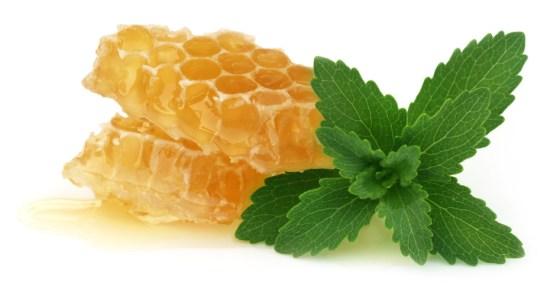 honey as burn medicine
