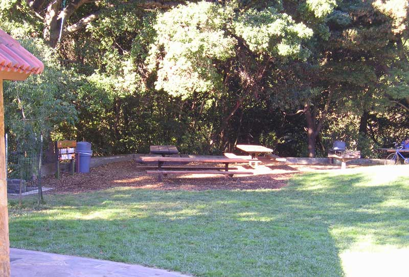 Our picnic site