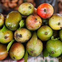 The Caribbean island of Nevis celebrates its 44 varieties of mango with a fruity food festival