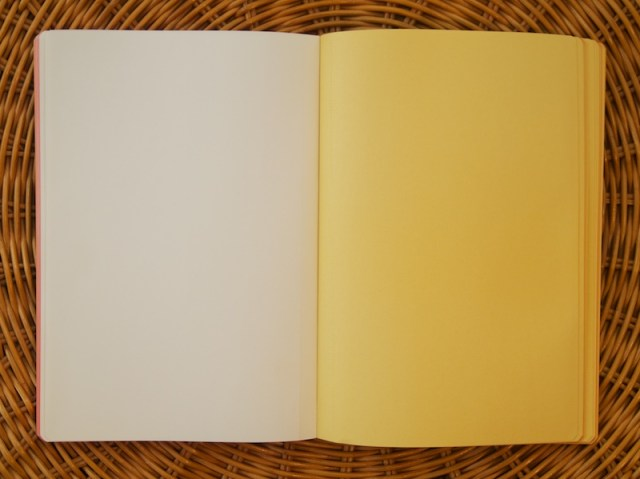 Dots Notebook by Plumb