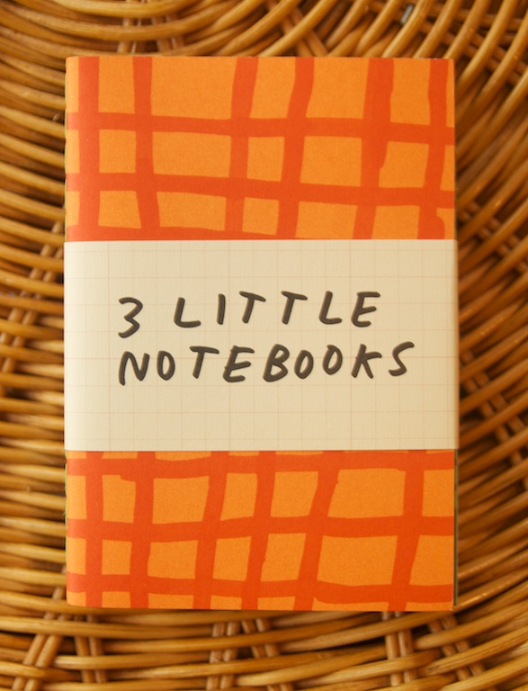 3 Little Notebooks by Plumb
