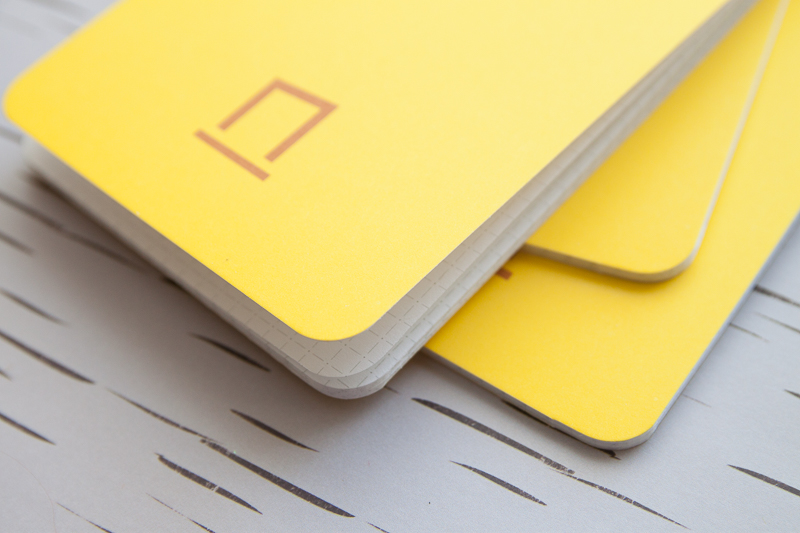 NockCo DotDash Pocket Notebook