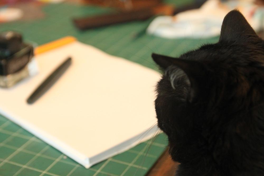 Django studies the Nakaya