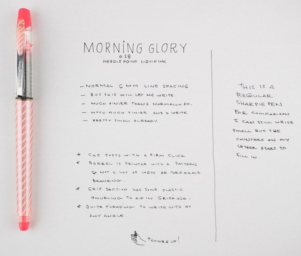 morning glory needlepoint liquid ink