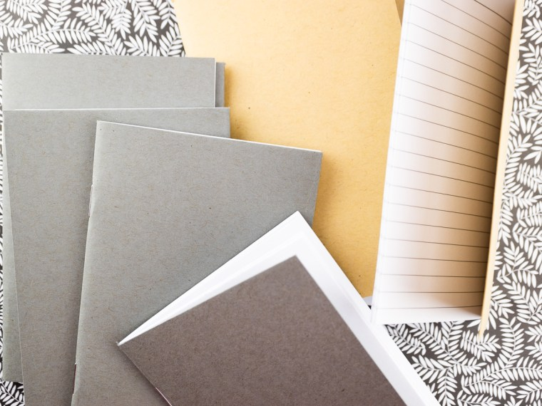 Notebook Review: Beech Tree Paper Kraft Notebooks