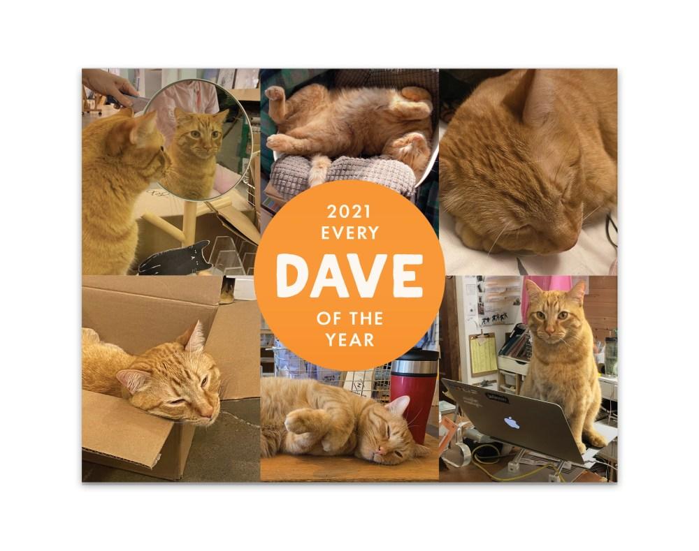 Dave 2021 Calendar