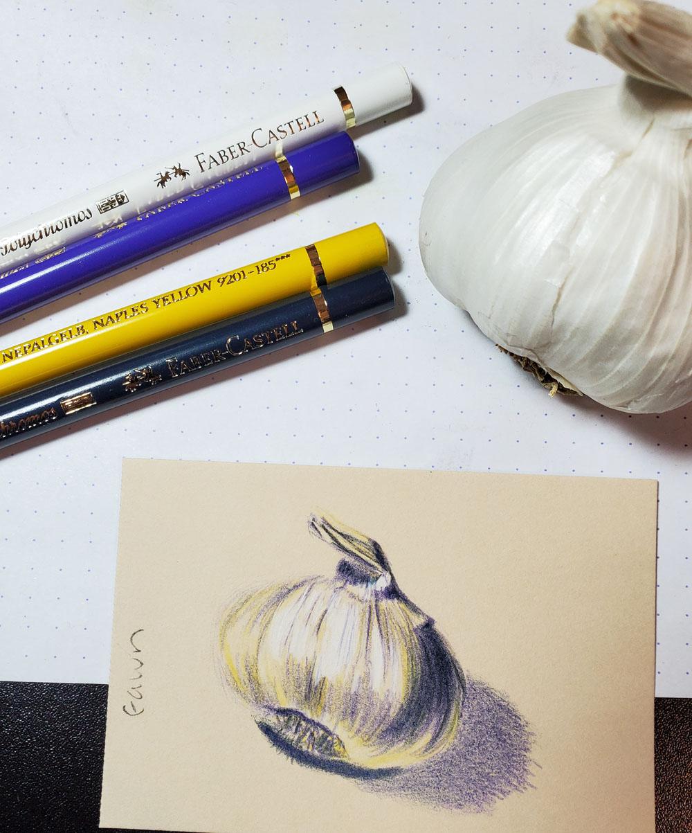 6 - Fawn sketch