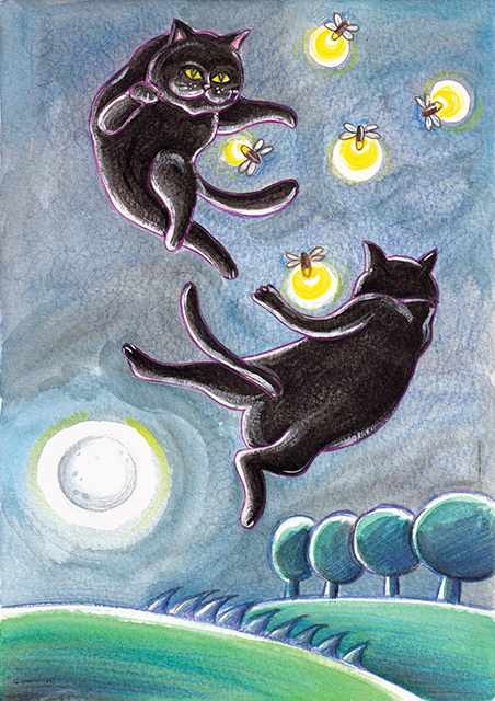 Black Stray Cats Chasing Fireflies