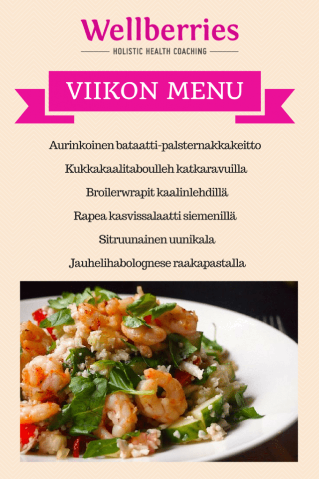 Wellberries meal plan vk 23 (2)