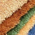 Why you Should Clean your Carpet Regularly