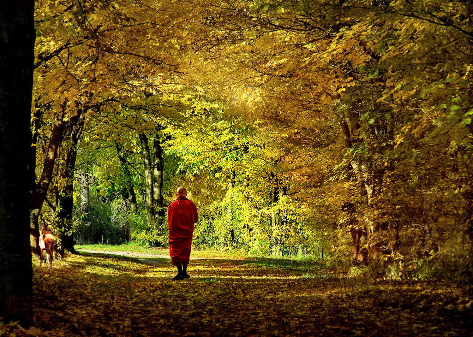 My day as a Monk