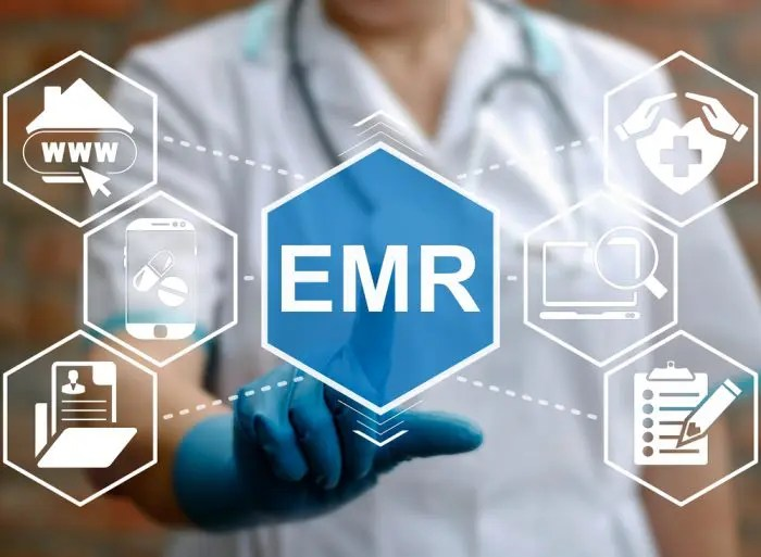 5 Strategies For Implementing An Electronic Medical Record System Into Your Private Practice 8 EMR e1557250392663