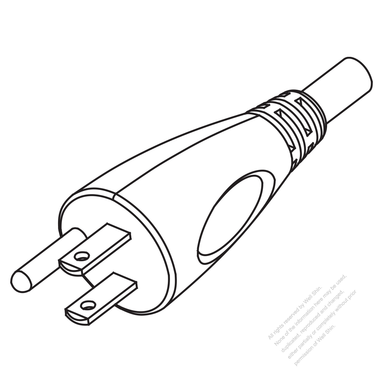 Locking Nema Configuration For Receptacle And Plug