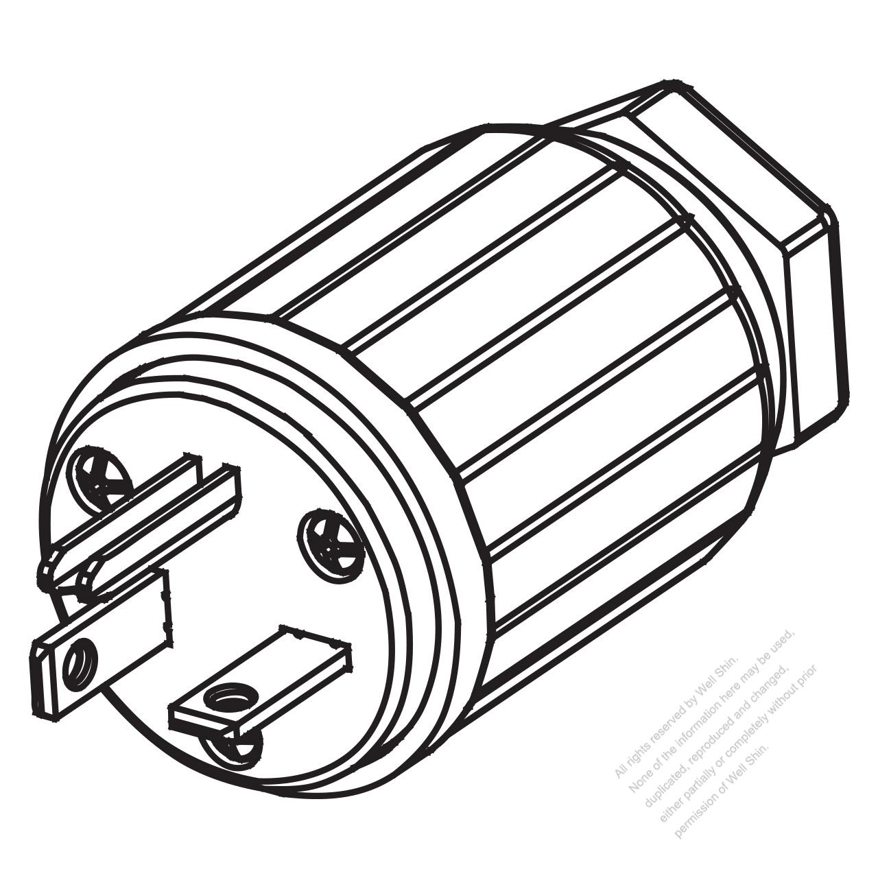 6 20p Plug
