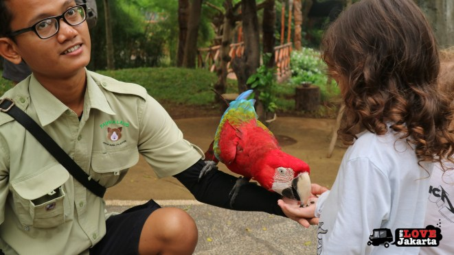 Tasha May_Treen May_Ecopark Ancol_peddle car_Jakarta indonesia_Feeding birds