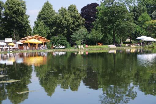Bonn Kunstrasen