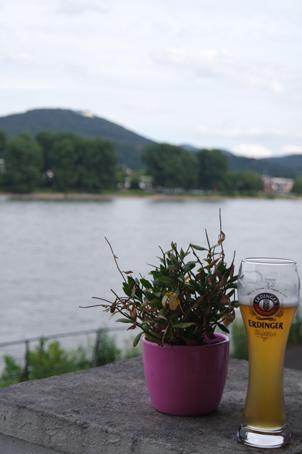 Biergarten am Rhein Tipp Schaumburger Hof
