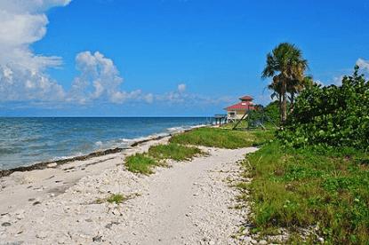 honeymoom island dunedin fl