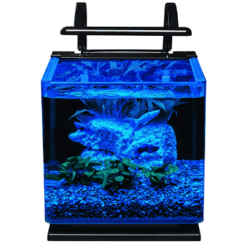 led freshwater aquarium