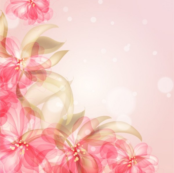 5 Delicate Floral Card Vector Backgrounds WeLoveSoLo