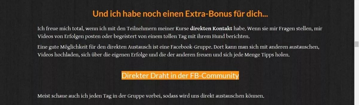 Online Welpenschule Vergleich
