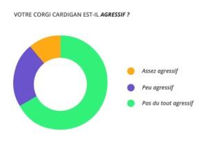 agressif_corgi_cardian