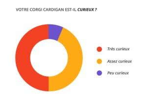 curieux_corgi_cardian