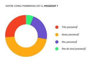 possessif_corgi_pembroke