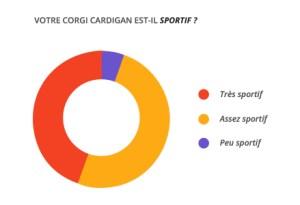 sportif_corgi_cardian