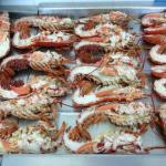 Lobsters ready for market ! Just need packaging from Cardigan Bay Shellfish