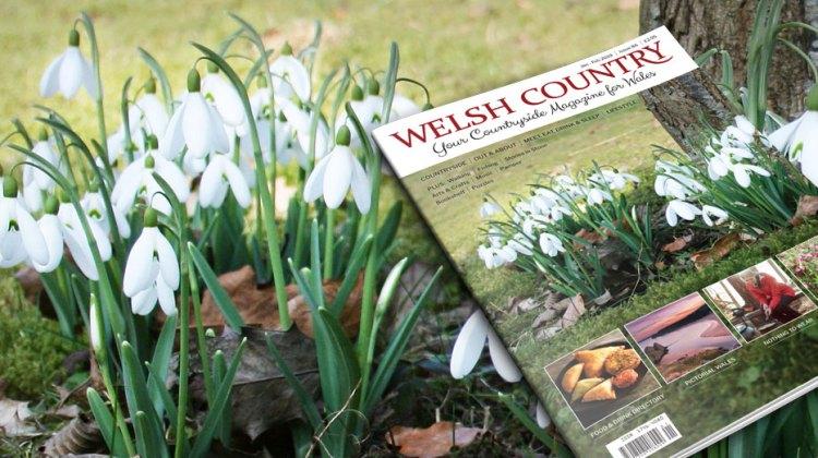 Welsh Country Jan/Feb 2019