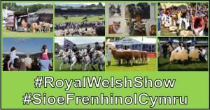 royal welsh collage