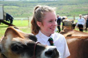 Llandyfaelog Show Child with cow