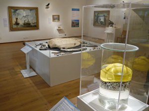 marine plastic inspired coast exhibition at Oriel y parc