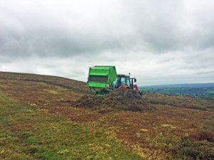 heathland cutting pembrokeshire national park