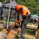 Chainsawing - Smallholding & Countryside Festival