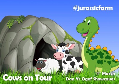 Cows On Tour graphic