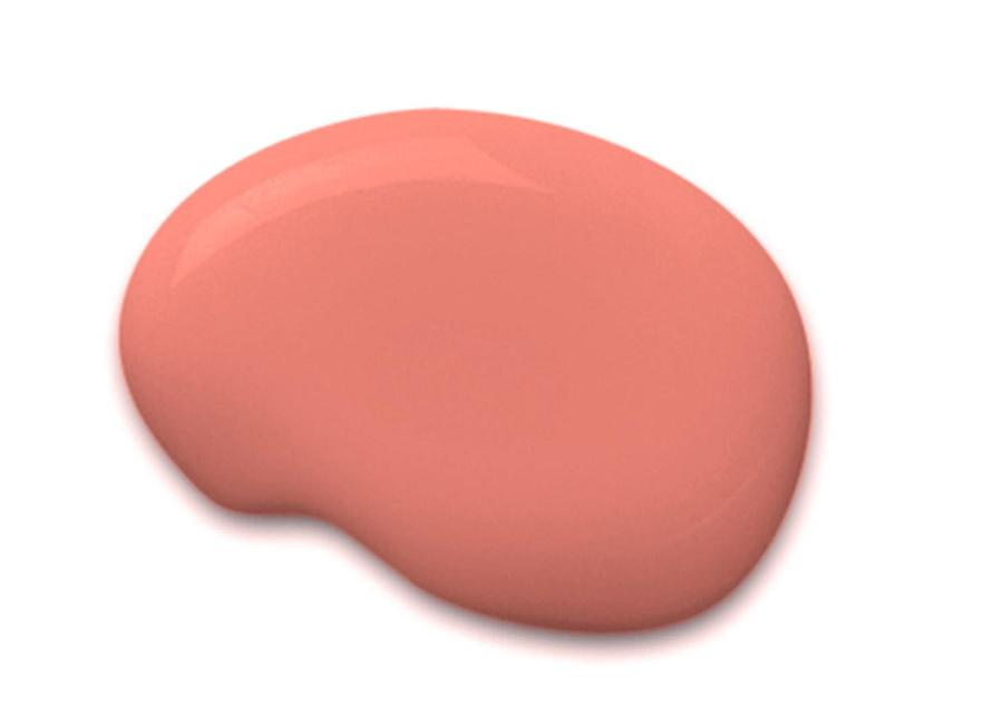 Sherwin-Williams Color of the Year Coral Reef SW 6606