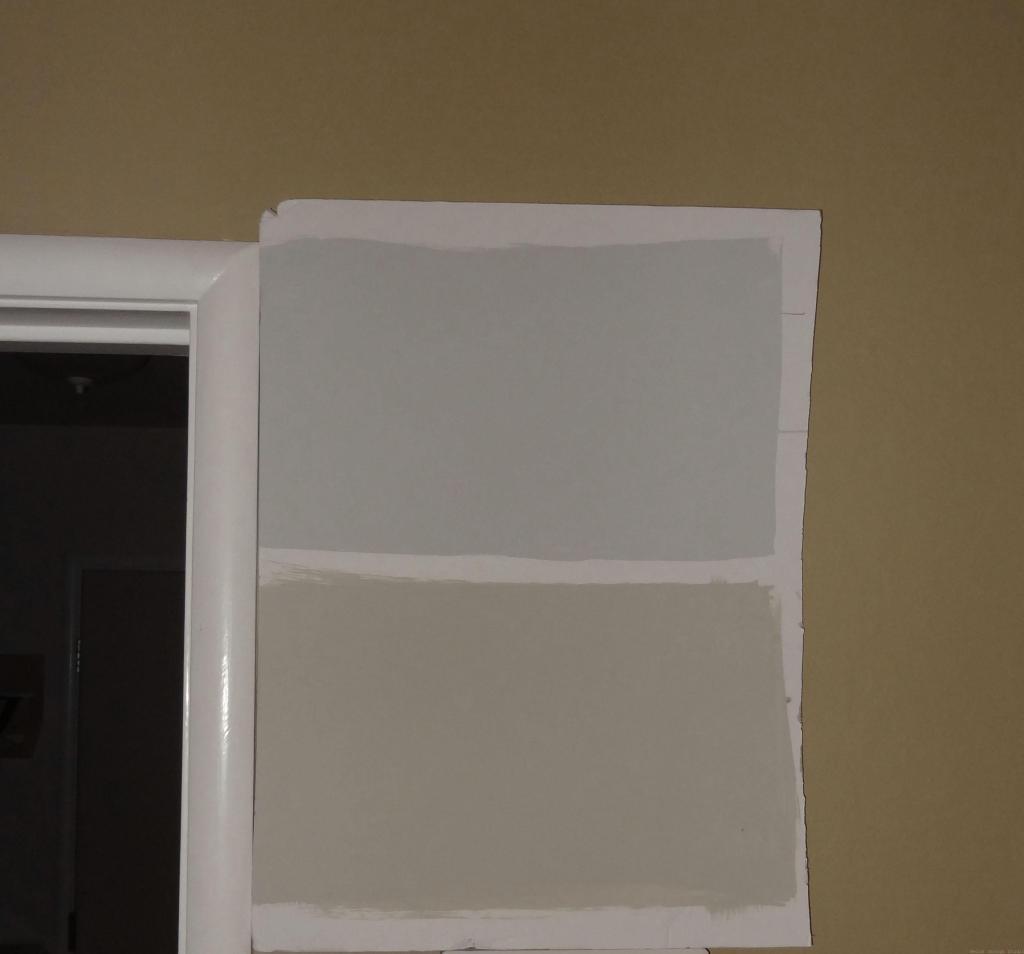 choosing gray paint
