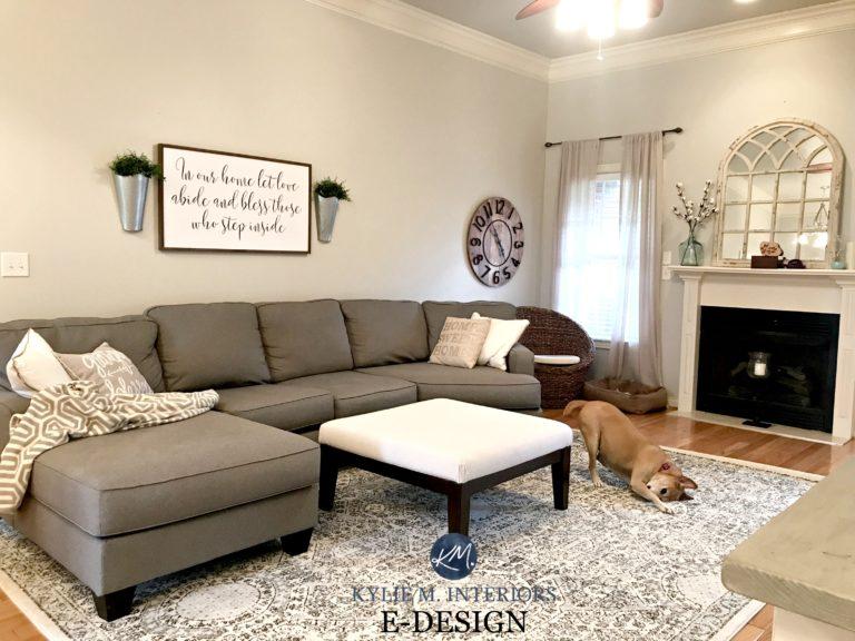 Sherwin Williams Agreeable Gray Living Room Welsh Design